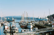 Friday Harbour, San Juan Islands